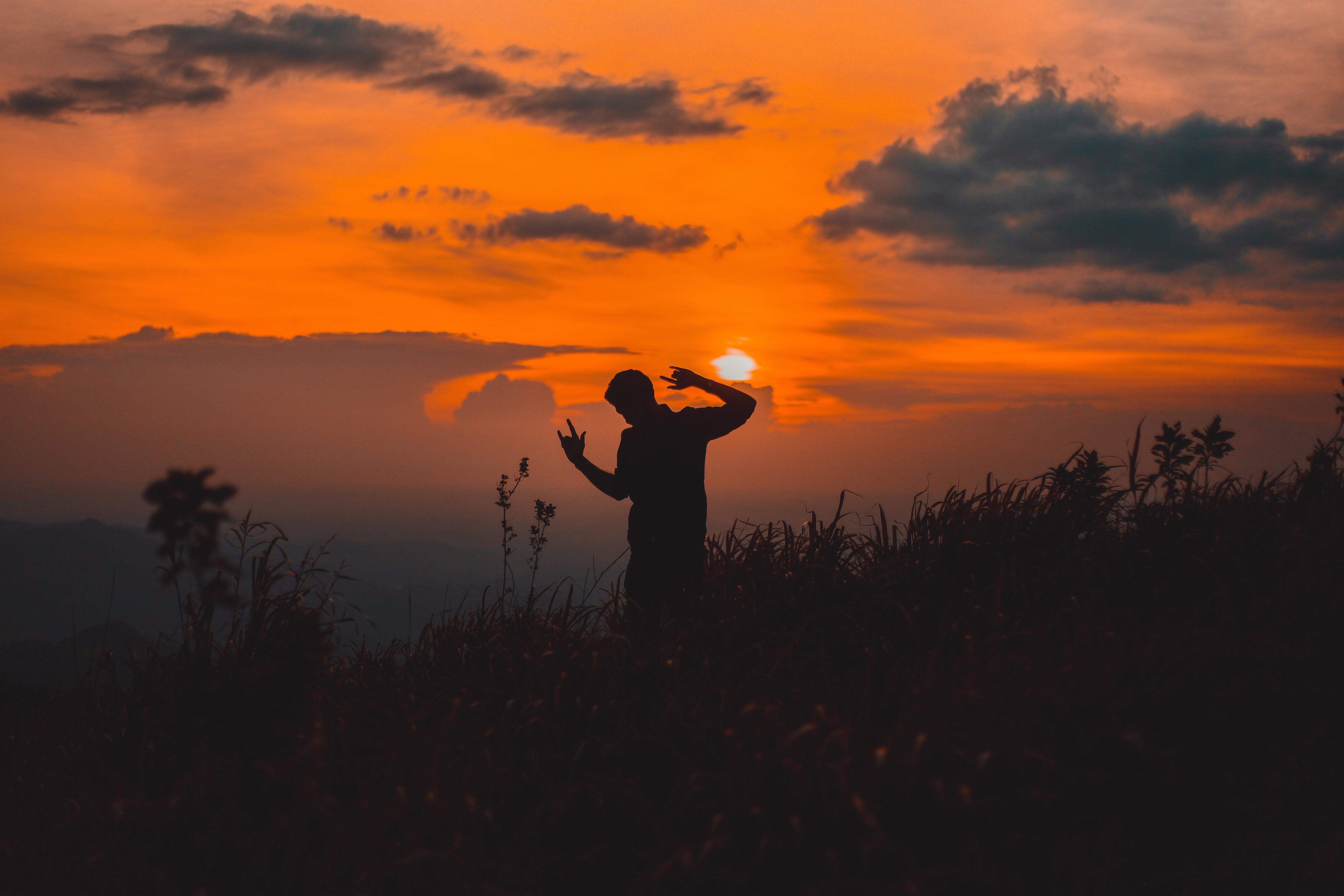 backlit-dawn-dusk-2292833.jpg