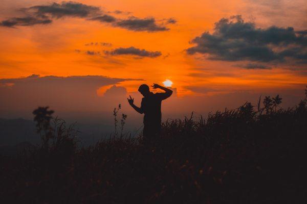 backlit-dawn-dusk-2292833